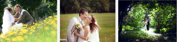 Выбираем день свадьбы. Свадьба летом